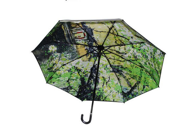 Stick Umbrella